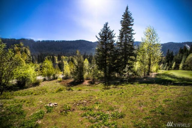 20700 Miracle Mile Rd, Leavenworth, WA 98826 (#1410045) :: Homes on the Sound