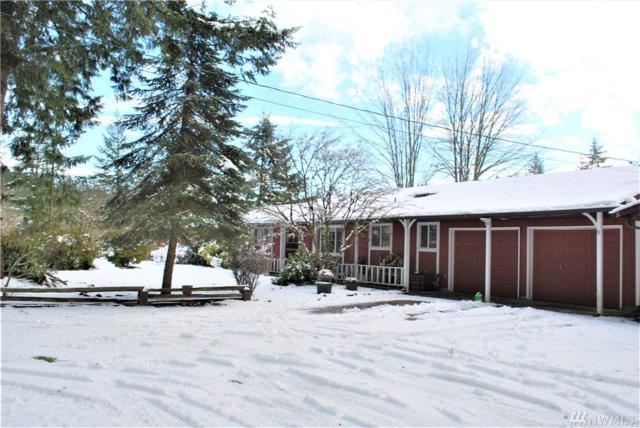 17427 Sargent Rd SW, Rochester, WA 98579 (#1410047) :: Northwest Home Team Realty, LLC