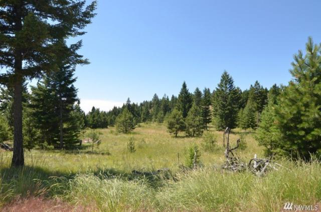 0 Aeneas Valley Rd/Nf-40, Tonasket, WA 98855 (#1410151) :: Costello Team