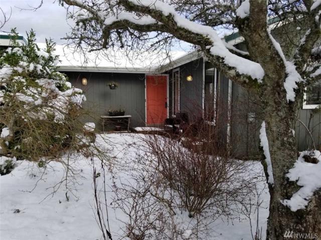 428 Island View Lane, Langley, WA 98260 (#1410252) :: Homes on the Sound