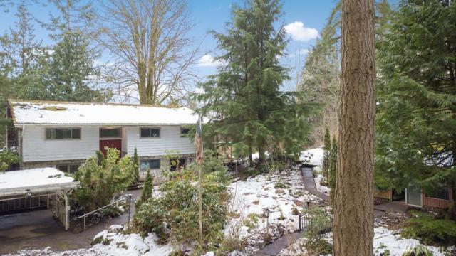 1108 Mcrae Rd NW, Arlington, WA 98223 (#1410672) :: Homes on the Sound