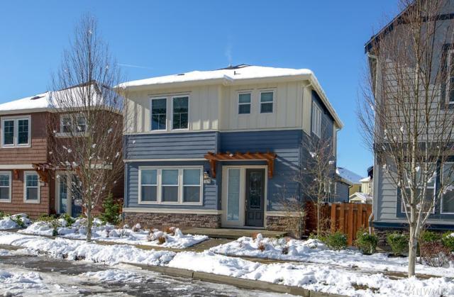 1678 NE Falls Dr, Issaquah, WA 98029 (#1410700) :: NW Home Experts