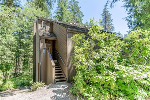 10500 Mount Baker Hwy #502, Glacier, WA 98244 (#1411094) :: Homes on the Sound
