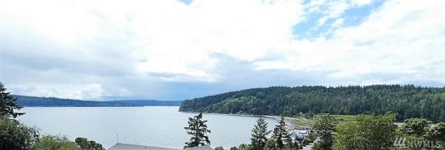 2195 Bay Vista Lane, Camano Island, WA 98282 (#1411581) :: Homes on the Sound