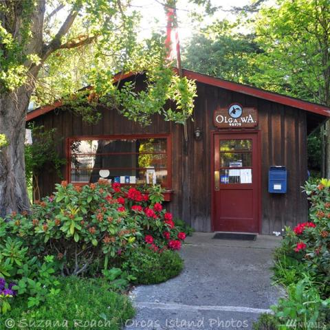 7025 Olga Rd, Orcas Island, WA 98279 (#1411710) :: Better Homes and Gardens Real Estate McKenzie Group