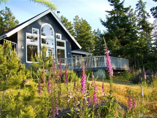 128 High Bluff Rd, Orcas Island, WA 98243 (#1411713) :: Real Estate Solutions Group