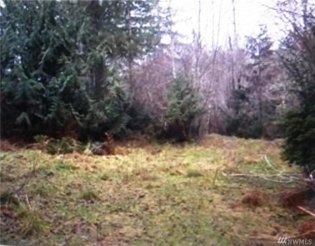 391 E Timberlakes Dr, Shelton, WA 98584 (#1411820) :: KW North Seattle