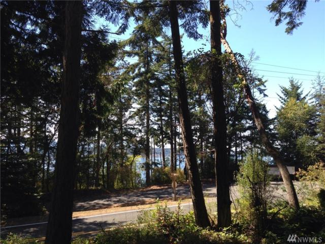 3333 Cape George Rd, Port Townsend, WA 98368 (#1411924) :: Canterwood Real Estate Team