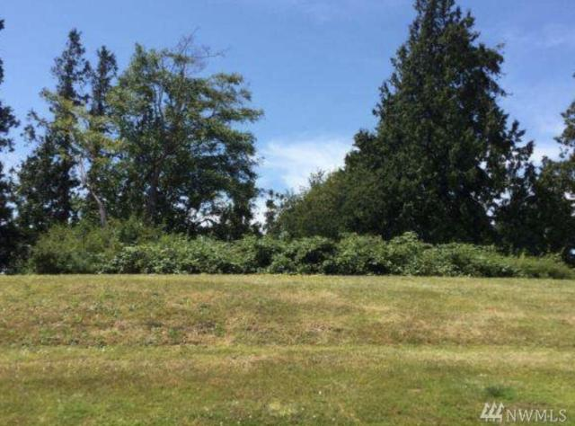 7949 W Golf Course Dr, Birch Bay, WA 98230 (#1411976) :: Homes on the Sound