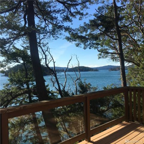 1493 Spring Point Rd, Orcas Island, WA 98245 (#1412295) :: Real Estate Solutions Group