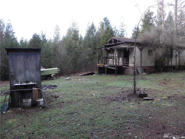 430 NE Horseshoe Dr, Belfair, WA 98528 (#1412660) :: Homes on the Sound