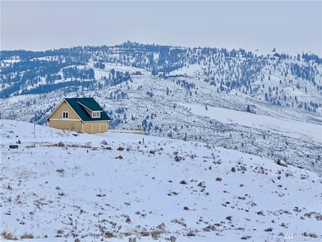 19 Quail Ridge Dr S, Brewster, WA 98812 (#1412891) :: Hauer Home Team