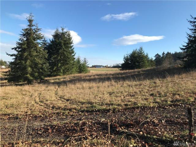 1777 Atterberry Rd, Sequim, WA 98382 (#1413098) :: Homes on the Sound