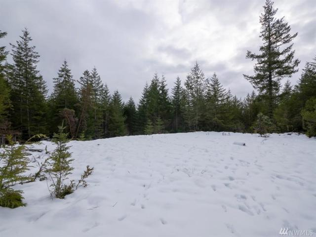 0 Lot 17 W Lake Ludvick Dr, Seabeck, WA 98380 (#1414098) :: Homes on the Sound