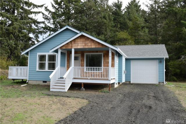 225 S Razor Clam Dr SW, Ocean Shores, WA 98569 (#1414253) :: The Deol Group