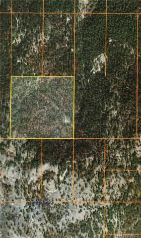 0 Tbd Broken Spoke Rd, Tonasket, WA 98855 (#1414692) :: Canterwood Real Estate Team