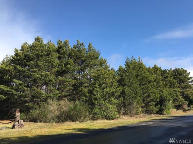 2-A Pheasant Run, Westport, WA 98595 (#1415042) :: Hauer Home Team