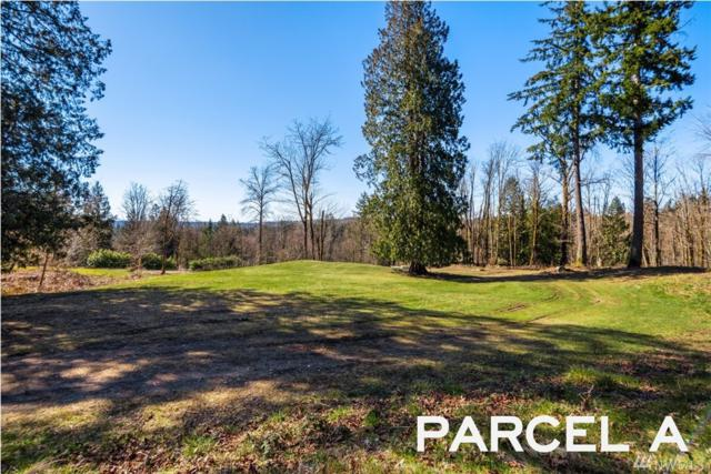 16345 Tiger Mountain Rd SE, Issaquah, WA 98027 (#1415625) :: The Home Experience Group Powered by Keller Williams