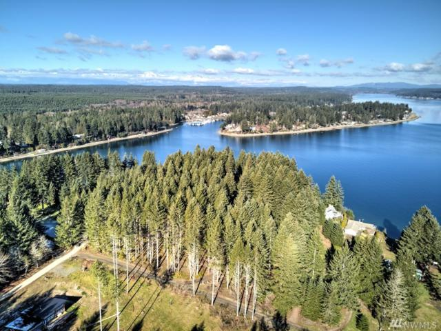 131 E Island Crest Rd, Grapeview, WA 98546 (#1415902) :: Kimberly Gartland Group