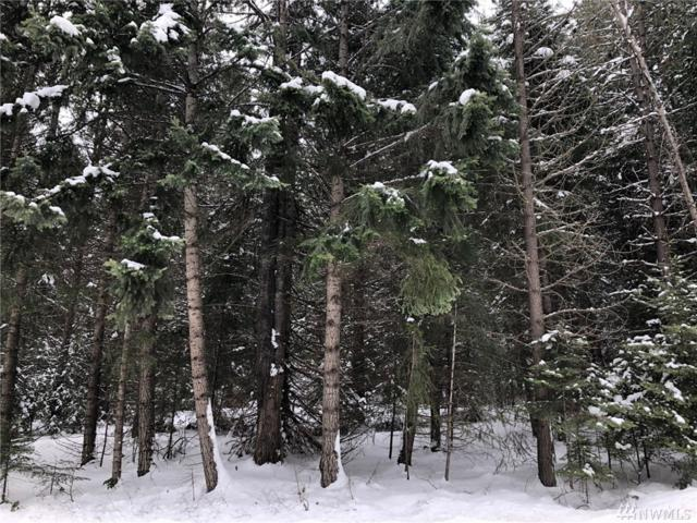 0-Lot 7 Nelson Siding Road, Cle Elum, WA 98922 (#1416013) :: Commencement Bay Brokers