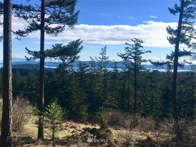 236 South Ridge Road, Decatur Island, WA 98221 (#1416016) :: The Shiflett Group