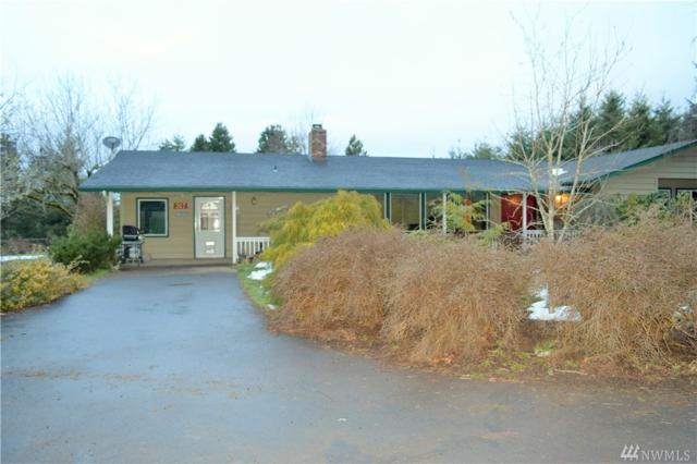 307 Painter Roth Rd, Kelso, WA 98626 (#1416017) :: Mike & Sandi Nelson Real Estate