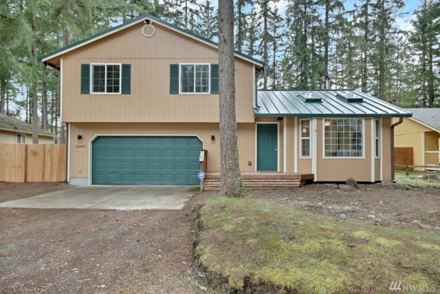 22439 Bluewater Dr SE, Yelm, WA 98597 (#1416361) :: Kimberly Gartland Group