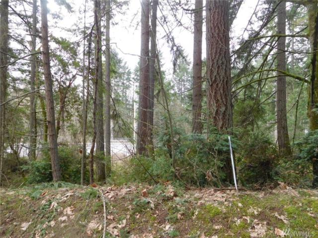 5610 Wollochet Dr NW, Gig Harbor, WA 98335 (#1416397) :: Real Estate Solutions Group
