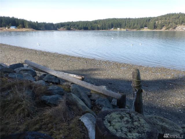 233 Mud Bay Dock Rd, Lopez Island, WA 98261 (#1416465) :: Crutcher Dennis - My Puget Sound Homes