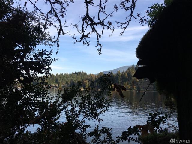 1090 Lake Whatcom Blvd, Sedro Woolley, WA 98284 (#1416781) :: Kimberly Gartland Group