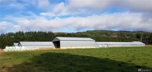 3457 State Hwy 508, Onalaska, WA 98570 (#1417165) :: Mike & Sandi Nelson Real Estate