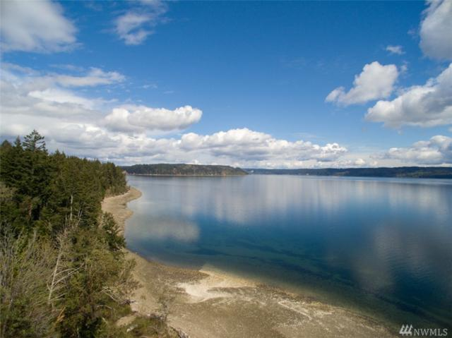 468 Point Whitney Rd, Brinnon, WA 98320 (#1417392) :: Crutcher Dennis - My Puget Sound Homes
