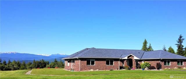 93 Blue Horizon Ct, Port Townsend, WA 98368 (#1417422) :: Alchemy Real Estate
