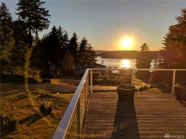 161 Whiskey Hill Rd, Lopez Island, WA 98261 (#1417454) :: Canterwood Real Estate Team