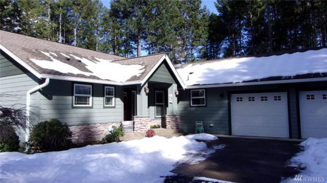 40 N Beaver Place N, Hoodsport, WA 98548 (#1417559) :: Canterwood Real Estate Team