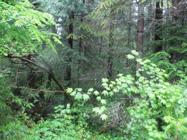 130 N Duckabush Dr, Hoodsport, WA 98548 (#1417583) :: Crutcher Dennis - My Puget Sound Homes