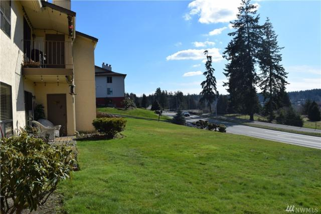 23305 Lakeview Dr C103, Mountlake Terrace, WA 98043 (#1417631) :: Real Estate Solutions Group