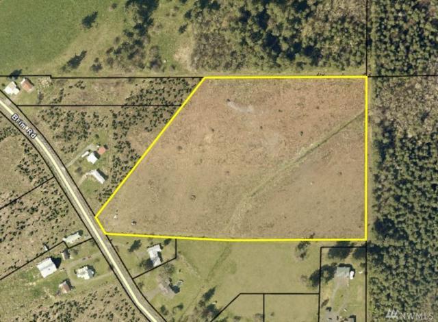 295 Brim Rd, Onalaska, WA 98570 (#1417648) :: Mike & Sandi Nelson Real Estate
