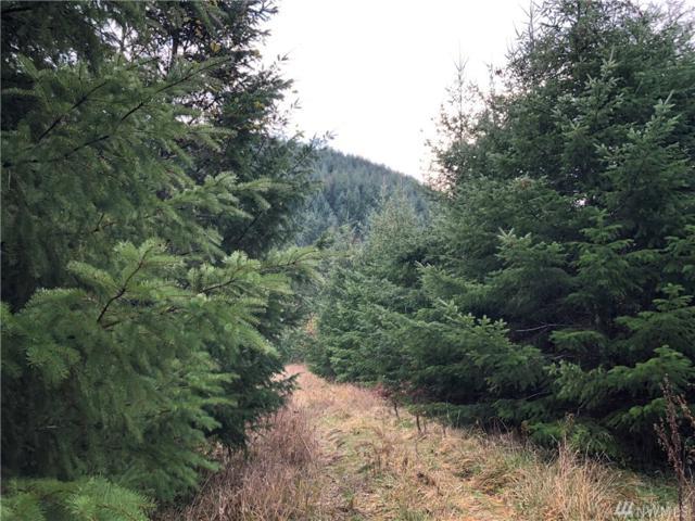 4703 State Route 6, Chehalis, WA 98532 (#1417862) :: Ben Kinney Real Estate Team