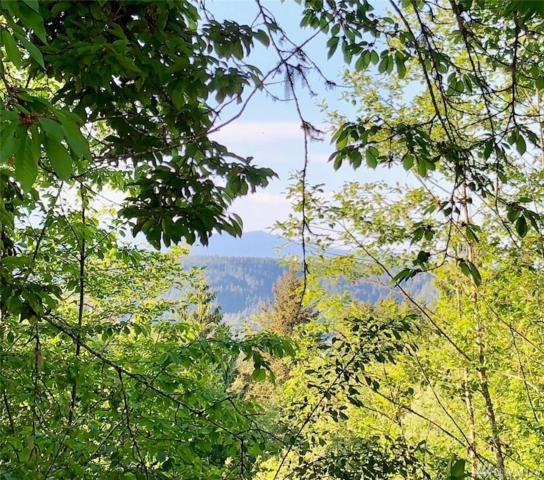 99 Vacant Land Spruce, Union, WA 98592 (#1417938) :: Kimberly Gartland Group