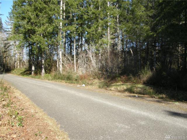 0-Lot 4 W Benthein Rd, Elma, WA 98541 (#1418032) :: Crutcher Dennis - My Puget Sound Homes
