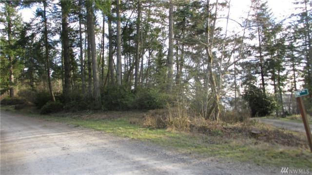 12302 Cole Point Dr Ai, Anderson Island, WA 98303 (#1418055) :: McAuley Homes