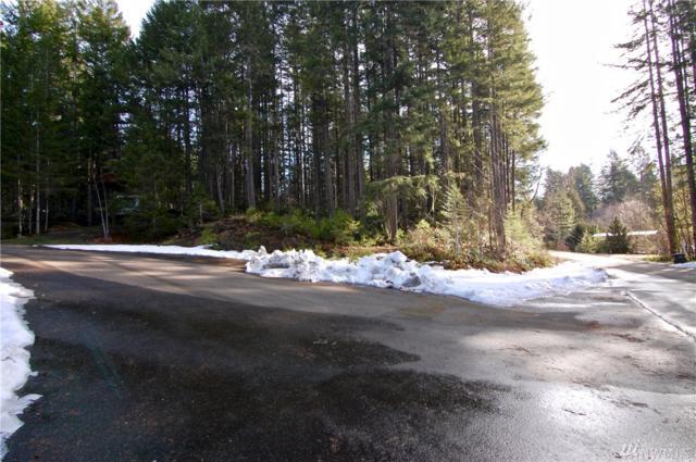581 N Duckabush Dr W, Hoodsport, WA 98548 (#1418068) :: Crutcher Dennis - My Puget Sound Homes