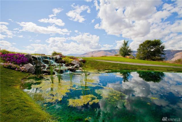 123 Red Hawk Dr, Orondo, WA 98843 (MLS #1418396) :: Nick McLean Real Estate Group