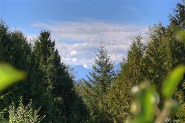 2276 NW Vinland View, Poulsbo, WA 98370 (#1418413) :: Kimberly Gartland Group