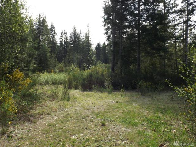 93 NE Kenosha Pass Rd, Belfair, WA 98528 (#1418443) :: Kimberly Gartland Group