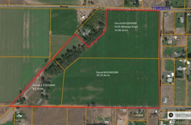 6335 NE Winesap Rd, Moses Lake, WA 98837 (#1418653) :: Homes on the Sound