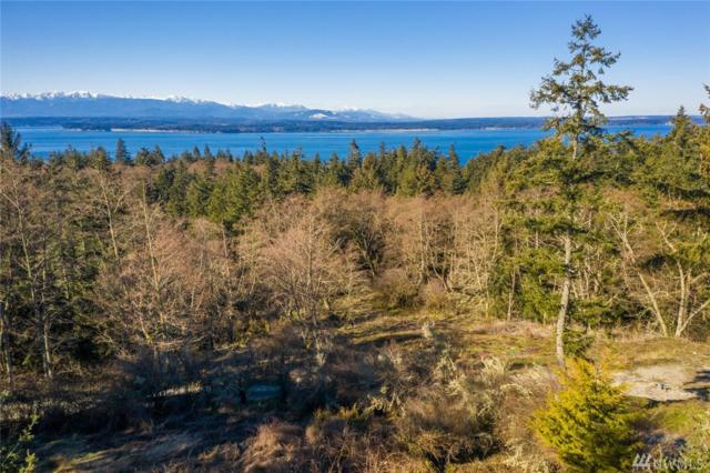 638 Bald Eagle Way, Freeland, WA 98249 (#1418867) :: Commencement Bay Brokers