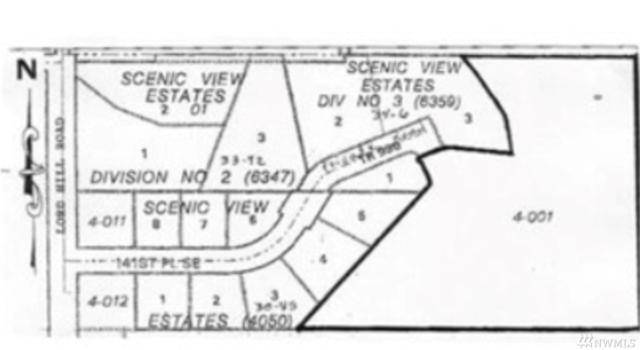 12906 141st Place SE, Snohomish, WA 98929 (#1418878) :: Kimberly Gartland Group