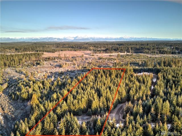 0-xxx E Treemont Dr, Shelton, WA 98584 (#1419071) :: Canterwood Real Estate Team